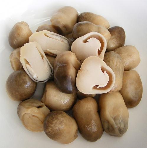 6 loại nấm tốt nhất cho sức khỏe