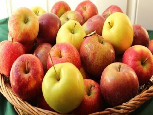 9 lợi ích sức khoẻ của táo