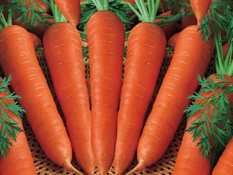 Bổ sung vitamin thiên nhiên cho làn da đẹp mịn màng