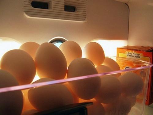 Cách bảo quản trứng được lâu ngày