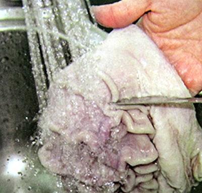 Cách làm sạch dạ dày (bao tử) lợn