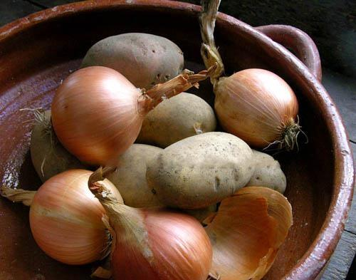 Chọn mua, bảo quản và chế biến khoai tây