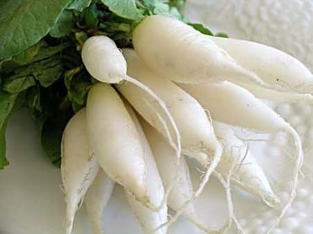 Củ cái trắng, rau mùa đông hoàn hảo