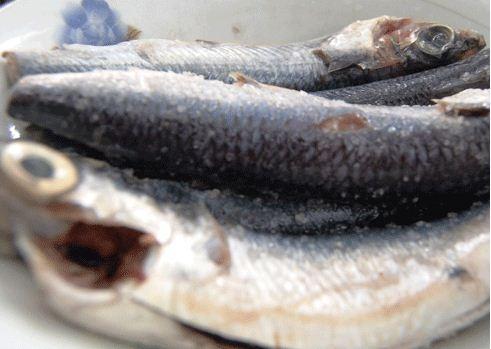 Đậm đà cá chuồn chiên nghệ