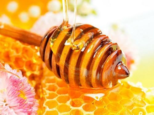 Đừng bỏ qua mật ong khi bầu bí