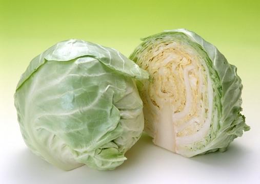 Lợi ích của bắp cải đối với sức khỏe