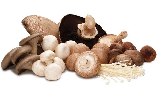 Mẹo chọn mua, sử dụng và bảo quản nấm