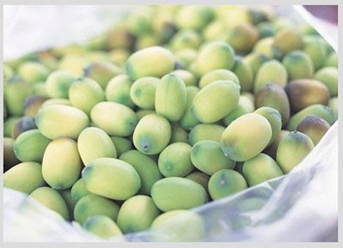 Mẹo hay giúp bạn bảo quản hạt sen tươi