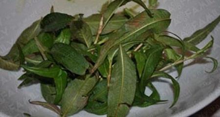 Muối dưa bắp cải