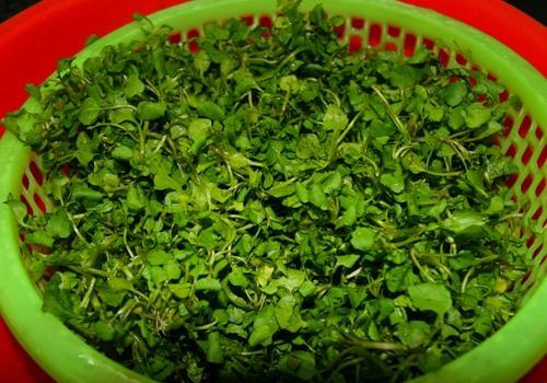Ngọt mát canh cải xoong nấu tôm tươi