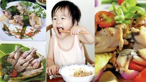 Thịt cóc có thật sự trị được bệnh còi xương?